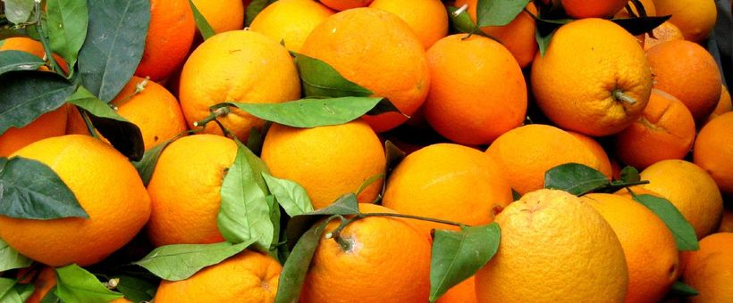M-Farm · Oranges outlook in this first month of 2015